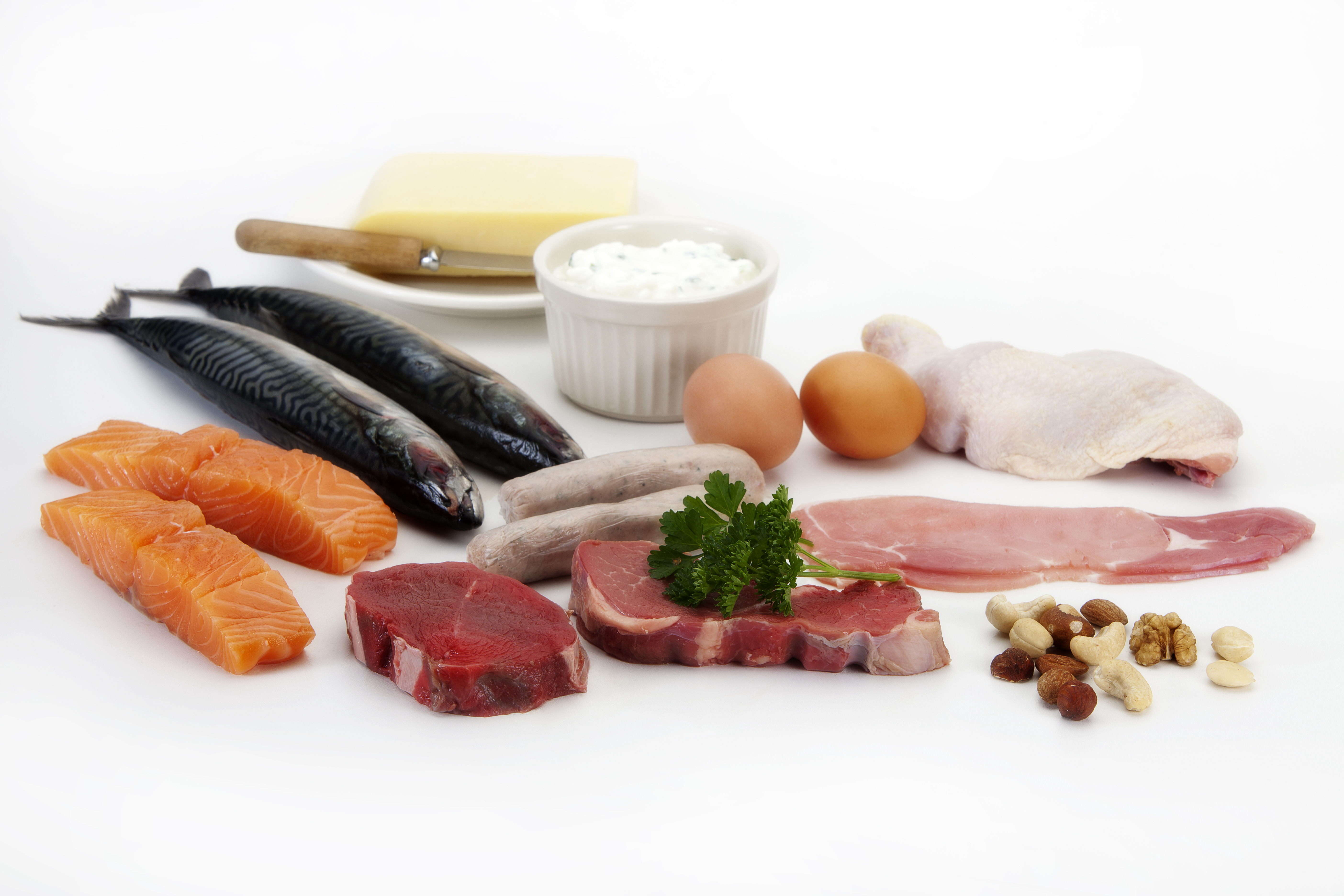 healthy foods rich in protein