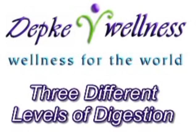 3levels-digestion
