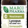 Lycopus